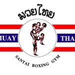 Muay Thai Technique Videos